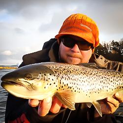 Taimenen kalastus